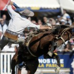 A gaucho, or cowboy, rides a horse during a rodeo in Montevideo, Uruguay. Image: AP Photo/Matilde Campodonico