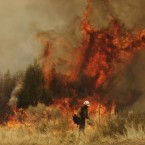 A firefighter sets a backburn to fight the Wallow Fire in Nutrioso, Arizona, on 10 June, 2011. (AP Photo/Marcio Jose Sanchez)
