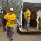 Robert Lock, left, and Fred Campbell load their horses from the home where they were staying in Luna, New Mexico as they evacuate from the Wallow Fire on 10 June, 2011. (AP Photo/ The Arizona Republic, David Wallace)