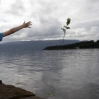A young boy throws a rose into the lake opposite to the island of Utoya, Norway, Sunday, 24 July, 2011.(AP Photo/Frank Augstein)