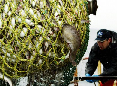 Cod fishing off Scotland in the Irish Sea could be outlawed in 2012 under proposals put forward by the European Commission.