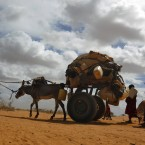 A Somali family relocates to the UNHCR's Dadaab camps in eastern Kenya on 5 August, 2011. The three camps, collectively the biggest in the world, had filled up with over 350,000 people by June 2011. (AP Photo/Jerome Delay/PA Images)