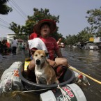 A Thai man and his dog leave their flooded neighbourhood in a makeshift vessel in Bangkok, Thailand on 16 November, 2011. Months of heavy rain and flooding killed over 560 people across the country. (AP Photo/Altaf Qadri/PA Images)