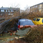 A tree rests on three cars in Havant, Hampshire today. (Image: Chris Ison/PA Wire)