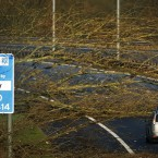 Fallen trees block two lanes of the M74 near Bothwell service station in Scotland. (Image: Danny Lawson/PA Wire)