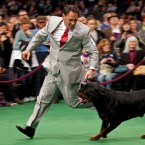 Perry Payson, of Bixby, Oklahoma, joins 'Pilot' for a run. Pilot won best of breed (- Perry did not). (AP Photo/Craig Ruttle)