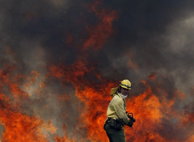 Firefighter tries to control a raging forest fire