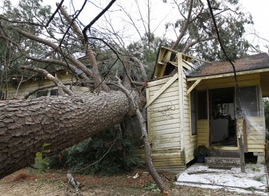 A tree blown over by a storm sits in the home of Martha Cavin in Centreville, Mississippi. Cavin had to be cut out from her home and was treated for a gash to her head.