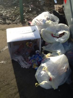 Image of illegal dumping in Dublin