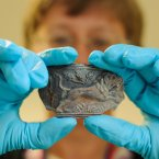 A fragment of an ceramic beaker dating from around the 1st century AD among thousands of Roman artifacts unearthed from a construction site at Bloomberg Place. (Image: Dominic Lipinski/PA Wire)