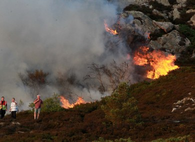 A gorse fire in Howth in Dublin during the week