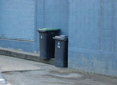 File image of a wheelie bin.