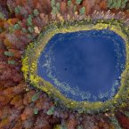 August colours blaze out in concentric rings from a lake in eastern Pomerania, Poland. The region on the south shore of the Baltic Sea is largely covered with farmland—and vast swaths of forest.<span class=
