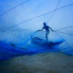 A Bangladeshi fisherman flings open a traditional blue net to catch tiny shrimp. His village, Gabura, is in southwestern Bangladesh and has been studied for the effects of climate change.<span class=