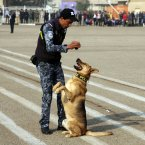 An Iraqi policeman and his K-9, dog demonstrate their skills during a ceremony marking Police Day at the police academy in Baghdad, Iraq. <span class=