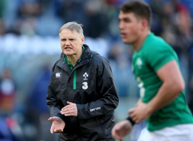 Schmidt wants more from his Ireland side.