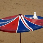 A seagull enjoys the sunshine on the beach in Broadstairs, Kent.<span class=
