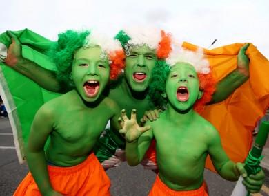 Fans at Ireland's European Championship qualifying round match against Georgia.