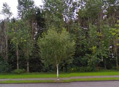 File photo of Langton Park
