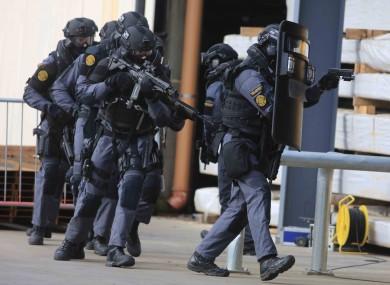 Armed special garda unit