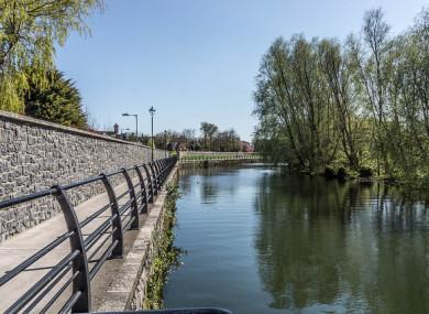 The River Dodder in Dublin. (File photo)