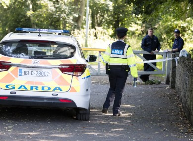 Gardai at the crime scene in Coolmine Woods in Dublin 15, where a woman's body was discovered this afternoon.