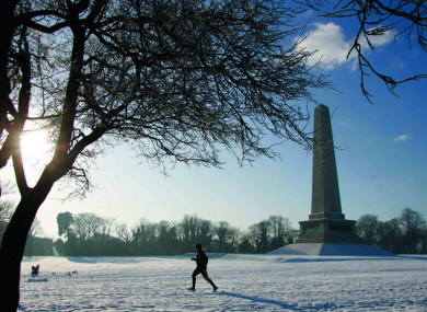 Dublin's Phoenix Park under a blanket of snow in 2010.