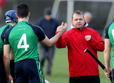 Davy Fitzgerald has guided Limerick IT to another Fitzgibbon Cup quarter-final.