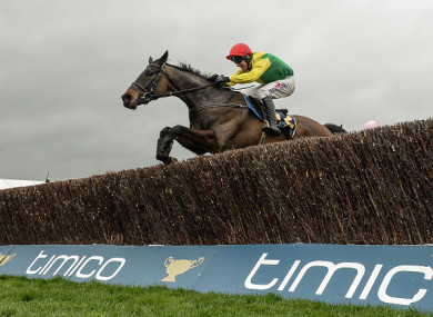 Sizing John triumphed in last year's Cheltenham Gold Cup.