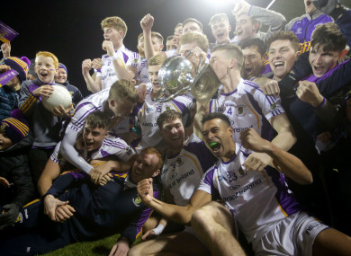 Kilmacud Crokes: Playing space for Dublin clubs is coming under increasing pressure.