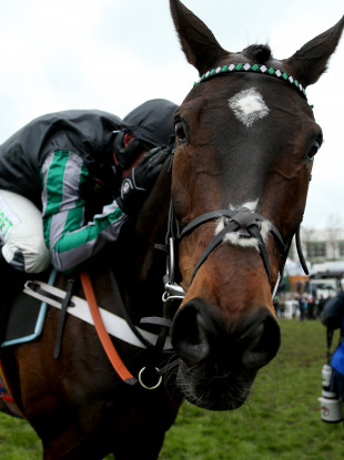 Jockey Nico de Boinville celebrates on Altior after winning the Betway Queen Mother Champion Chase.
