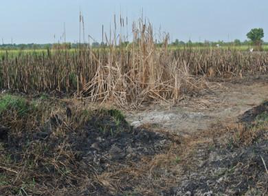 File photo: Burned land
