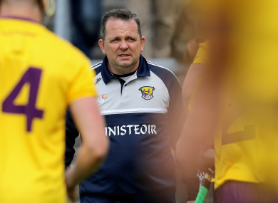 Wexford manager Davy Fitzgerald.