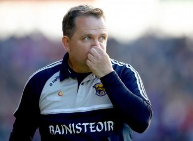 Wexford boss Davy Fitzgerald.