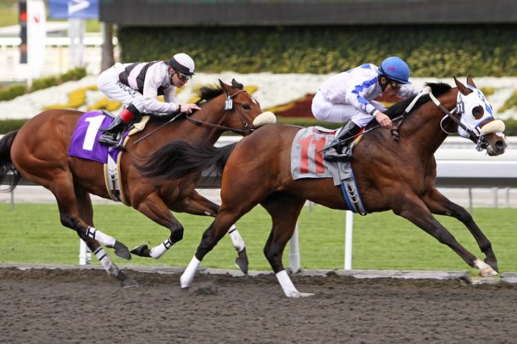 horse racing betting tax uk income