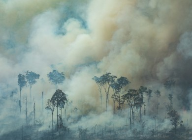 Smoke rises from the forest during a fire near the town of Caneiras do Jamari in Brazil