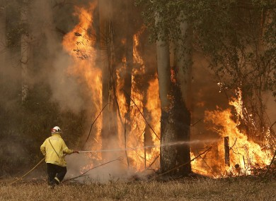 A Tuncurry fire crew member fights part of the Hillville bushfire south of Taree, in the Mid North Coast region