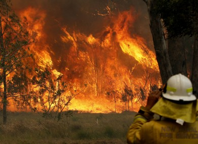 A firefighter watches the progress of bushfires in New South Wales