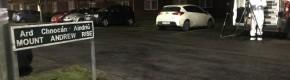 Gardaí suspect man found dead in burning car in Dublin had been shot