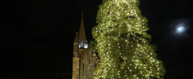 The Tree of Light on the grounds of St Mary's Cathedral, Killarney.