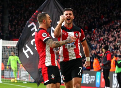 Shane Long celebrates his goal.