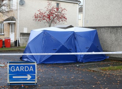 The scene where the burning car was found in Lucan in November.