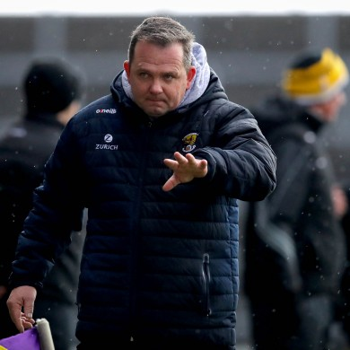 Wexford manager Davy Fitzgerald does not want the black card in hurling.
