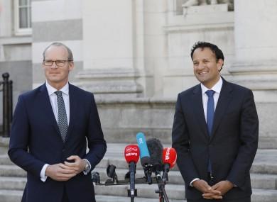 Tánaiste Simon Coveney and Taoiseach Leo Varadkar heavily backed the bid for the Security Council seat.