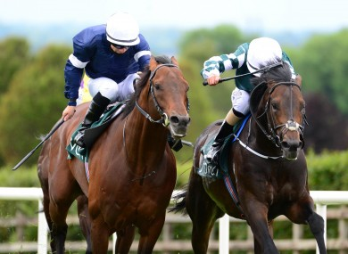 Ancient Spirit and Shane Foley (right) beats Buckhurst (left) to win the Heritage Stakes at Navan Racecourse.