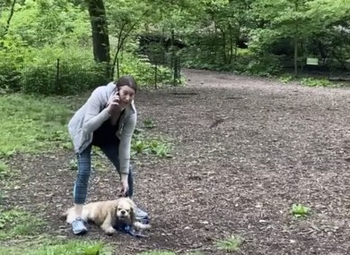 This image from video provided by Christian Cooper shows Amy Cooper with her dog calling police at Central Park in New York.