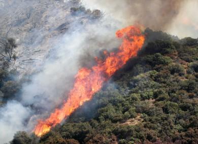 The El Dorado fire burns in the San Bernardino National Forest near Oak Glen, California, yesterday.