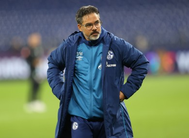 Schalke have cut ties with David Wagner.