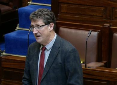 Transport Minister and Green party leader Eamon Ryan.