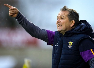 Davy Fitzgerald during today's game between Clare and Wexford.